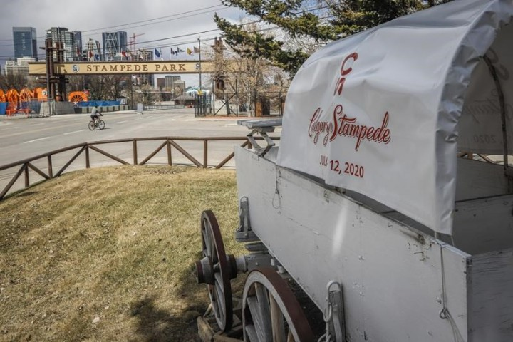 'Very hopeful:' Planning underway for modified Calgary Stampede in 2021