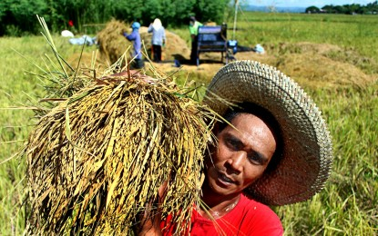 Nat'l Food Security Summit to highlight Department of Agriculture plans, achievements