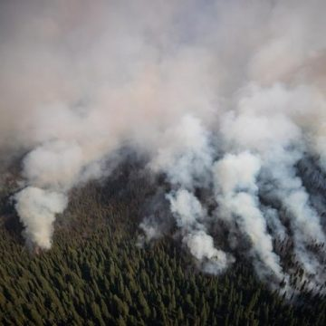Heat wave, winds compound wildfire risk in B.C., with no relief due until Sunday